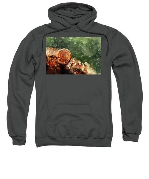 Magic Forest Sweatshirt
