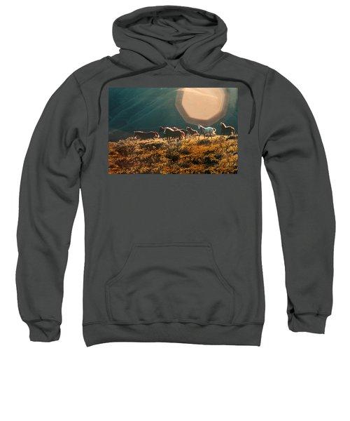 Magical Herd Sweatshirt