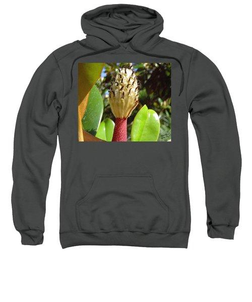 Magnolia Faith  Sweatshirt