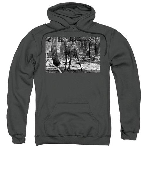 Making A Stand Sweatshirt