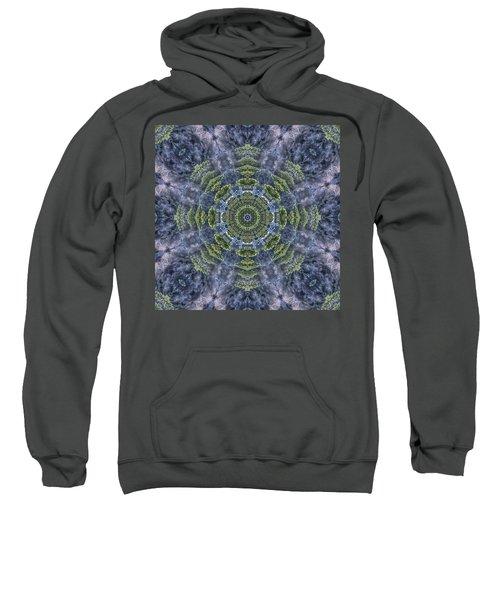 Mandala41 Sweatshirt