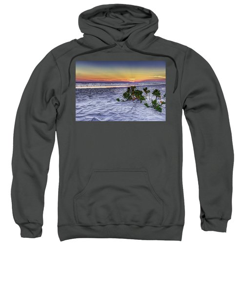 Mangrove On The Beach Sweatshirt