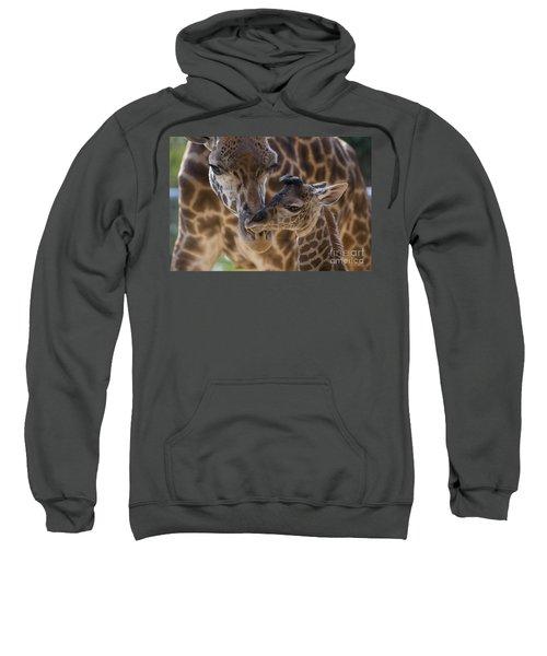 Masai Giraffe And Calf Sweatshirt