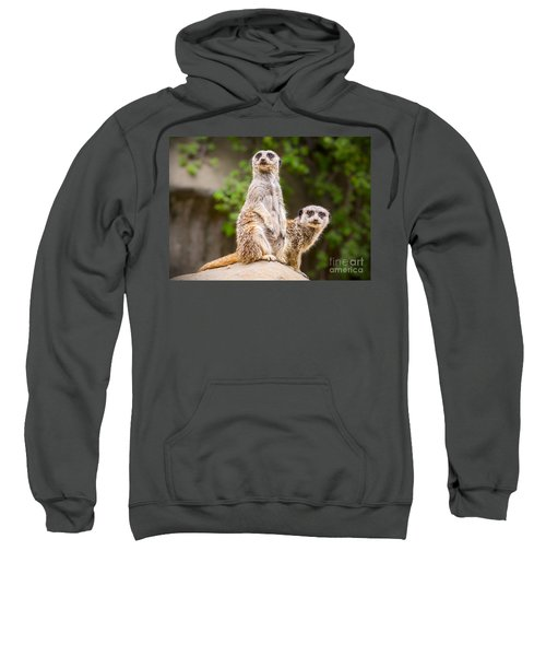 Meerkat Pair Sweatshirt by Jamie Pham