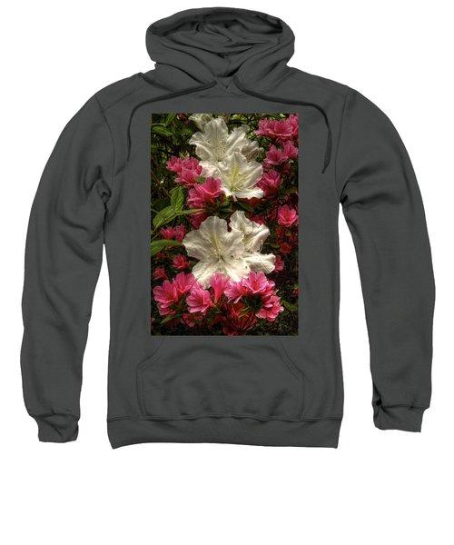 Merging Azaleas  Sweatshirt