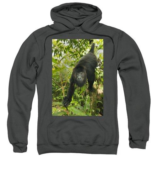 Mexican Black Howler Monkey Belize Sweatshirt