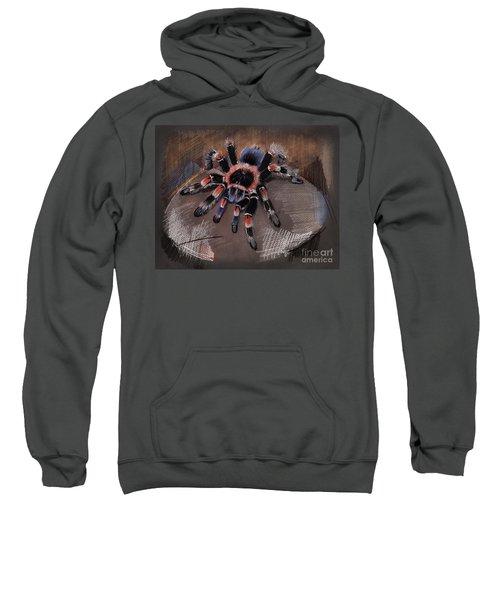 Mexican Redknee Tarantula Sweatshirt