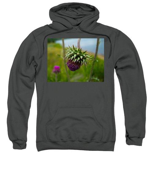 Milk Thistle Sweatshirt