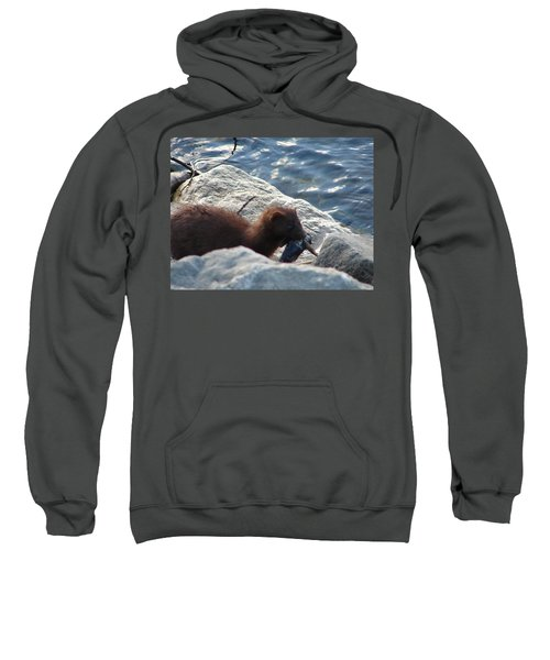 Mink With A Round Goby Sweatshirt