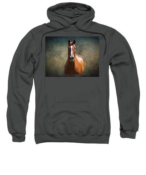 Misty In The Moonlight Sweatshirt