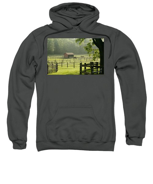 Misty Morning Maze Sweatshirt