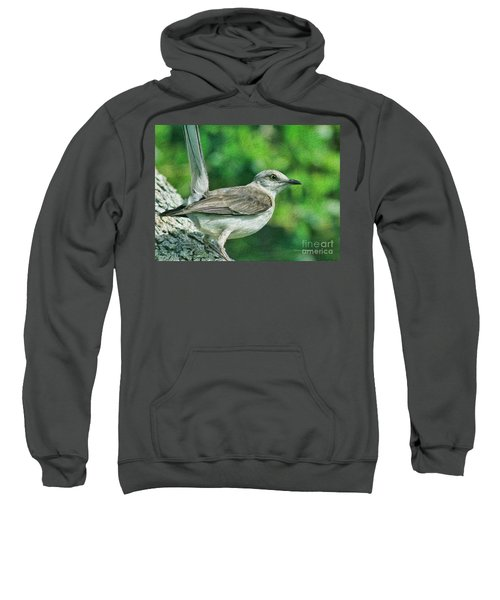 Mockingbird Pose Sweatshirt