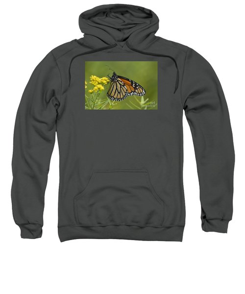 Monarch 2014 Sweatshirt