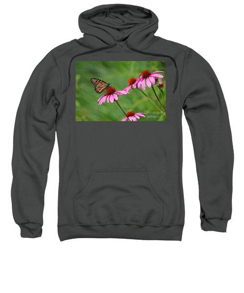 Monarch On Garden Coneflowers Sweatshirt