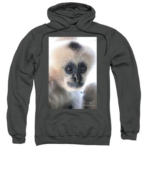 Monkey Face Sweatshirt