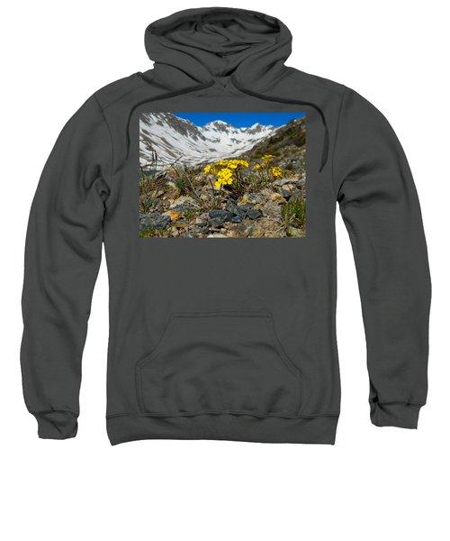 Blue Lakes Colorado Wildflowers Sweatshirt