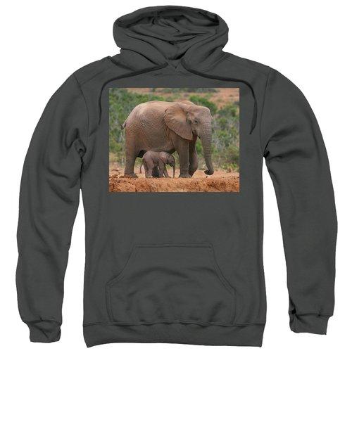 Mother And Calf Sweatshirt