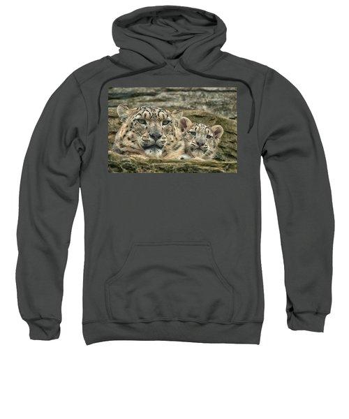 Mother And Cub Sweatshirt
