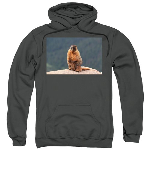 Mother Marmot Sweatshirt