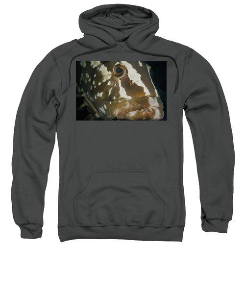 Mr. Grouper Sweatshirt