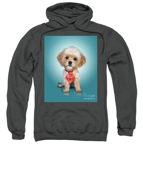 Mr. Toby Waffles The Cavapoo Sweatshirt