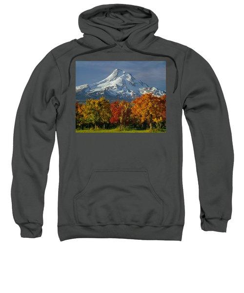 1m5117-mt. Hood In Autumn Sweatshirt