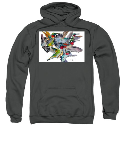 Da053 Multi-hummers By Daniel Adams Sweatshirt