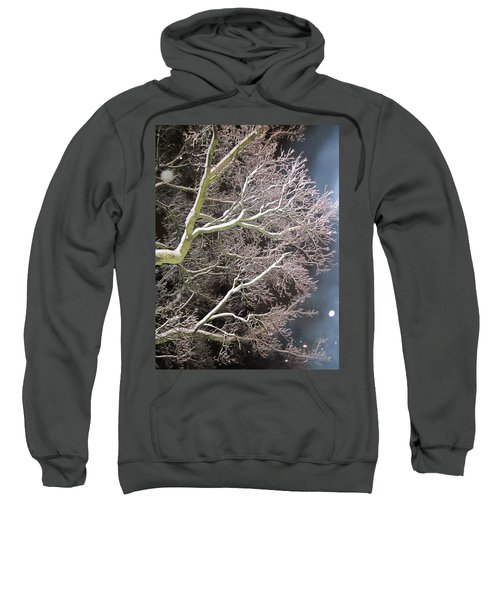 My Magic Tree Sweatshirt