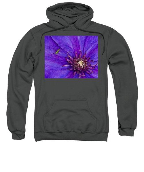 My Old Clematis Home Sweatshirt