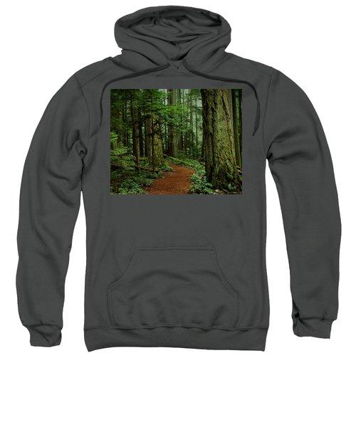Mystical Path Sweatshirt