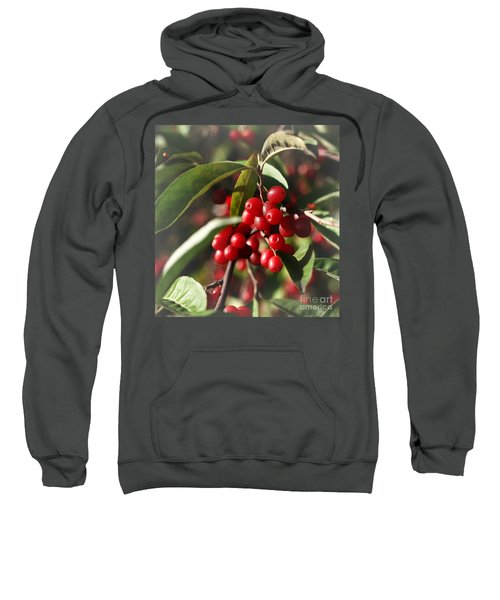 Natures Gift Of Red Berries Sweatshirt