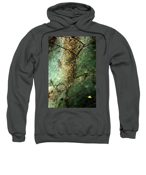 Sweatshirt featuring the photograph Natures Past Captured In A Web by Kim Pate