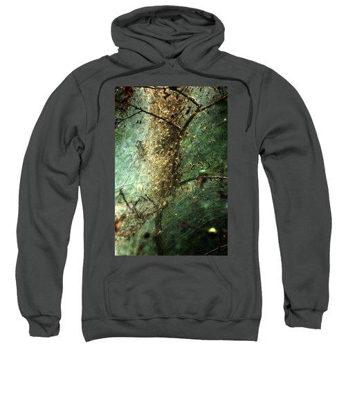 Natures Past Captured In A Web Sweatshirt