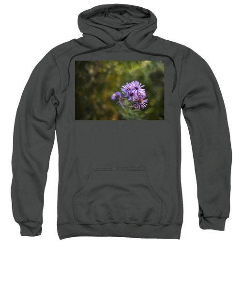 New England Asters Sweatshirt