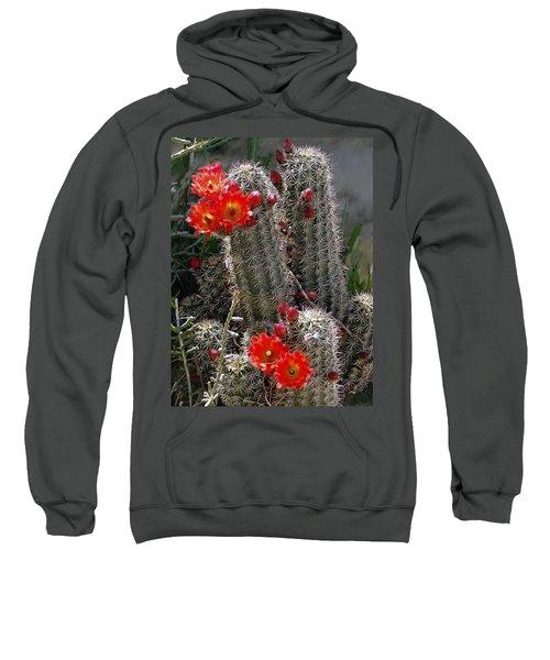 New Mexico Cactus Sweatshirt