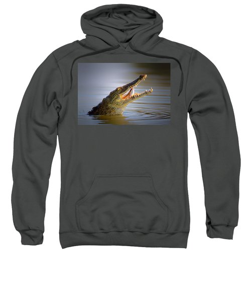 Nile Crocodile Swollowing Fish Sweatshirt by Johan Swanepoel