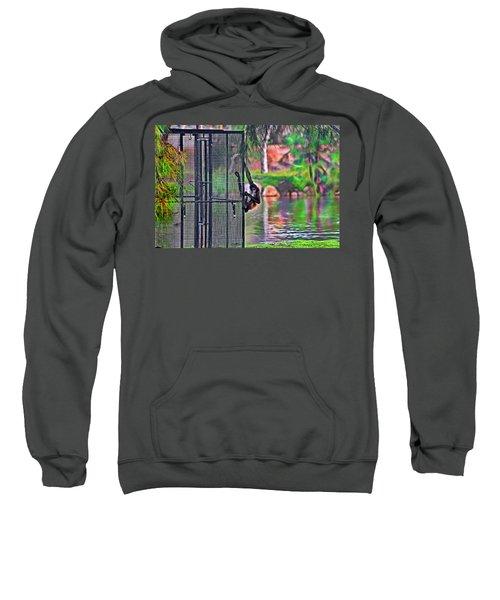 No Prison For Me  Sweatshirt