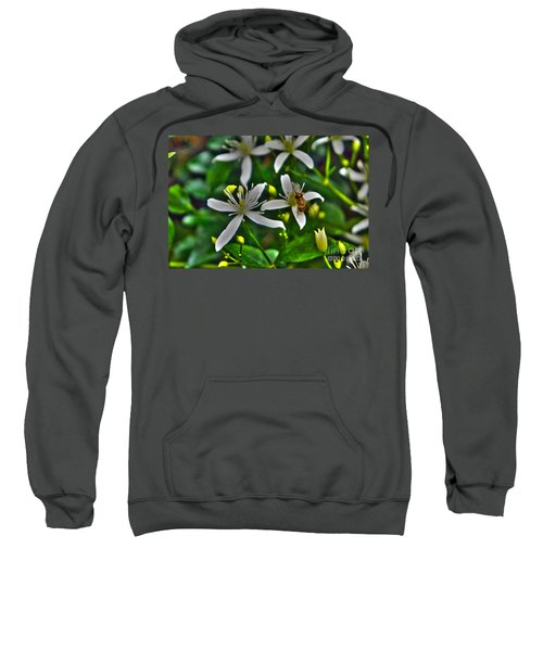 Sweatshirt featuring the photograph Odd Beauty by Kim Pate