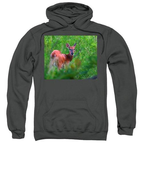 On Borrowed Time Sweatshirt
