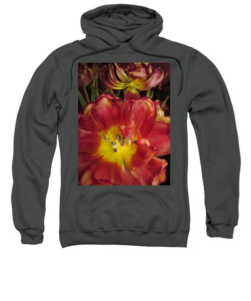 On Their Way Out Sweatshirt