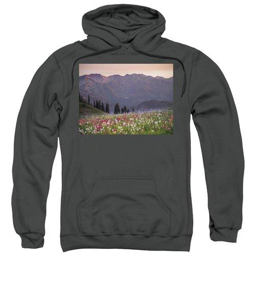 Only Opportunities Sweatshirt