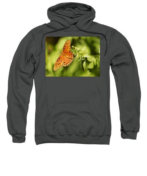 Orange Butterfly Sweatshirt