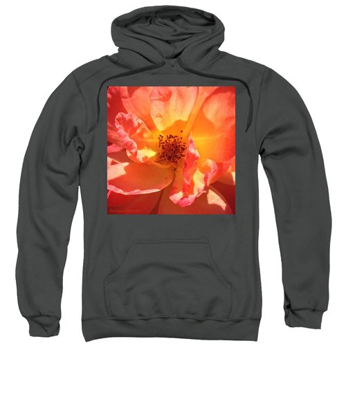 Orange Confection Rose Sweatshirt
