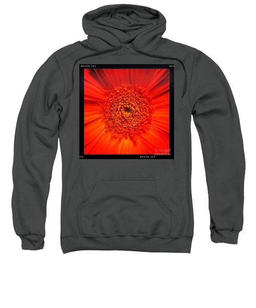 Sweatshirt featuring the photograph Orange by Denise Railey