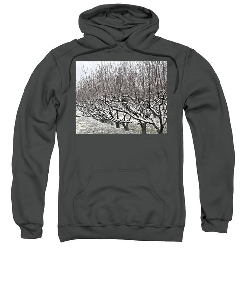 Orchard In Winter Sweatshirt