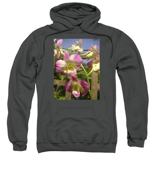 Orchid Splendor Sweatshirt