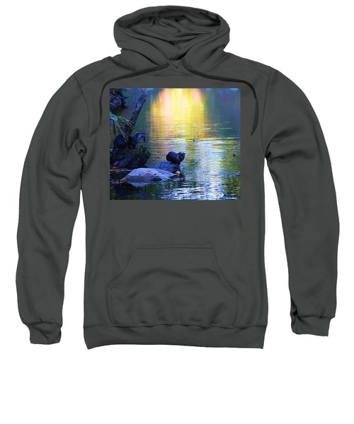 Otter Family Sweatshirt by Dan Sproul