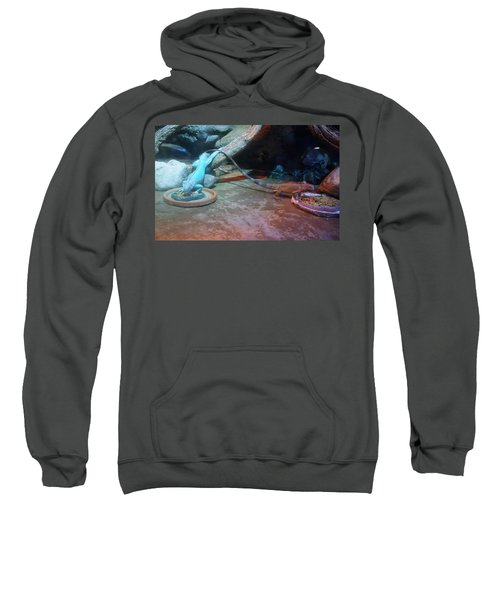Out Of Africa Lizards Sweatshirt