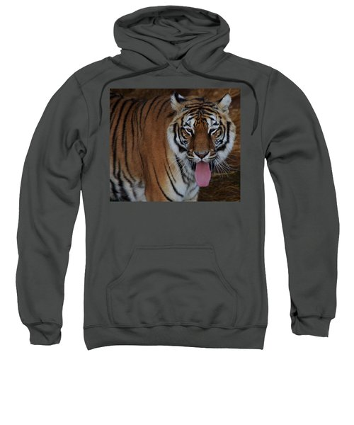 Out Of Africa  Tiger 2 Sweatshirt
