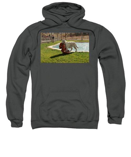 Out Of Africa Tiger Splash 2 Sweatshirt